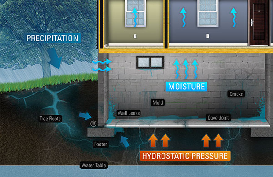 Basement Waterproofing Problems Solutions Albany Schenectady Ny Fazio Enterprises