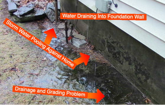 Drainage Problems And Solutions Contractor Albany